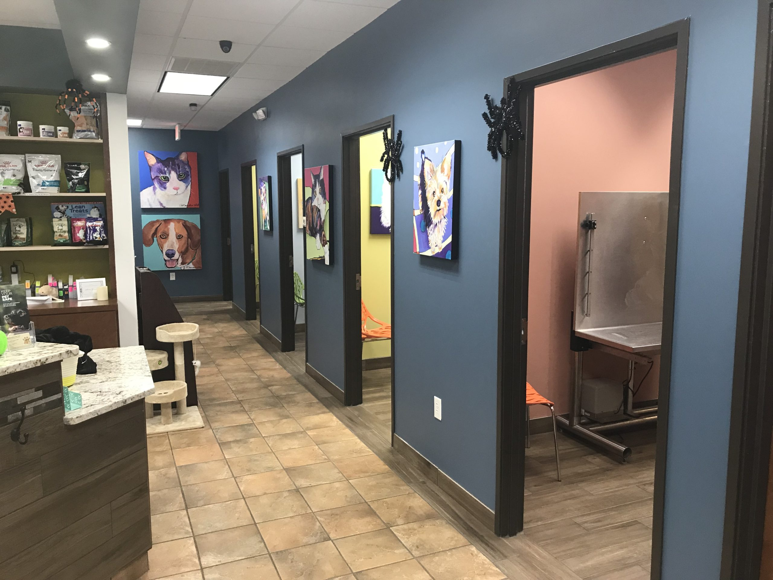 Midway Hollow Pet Clinic - Hallway